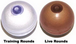 Less Lethal Training Rounds (Tube of 100)